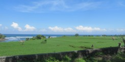 AMAZING CLIFF-SIDE OCEAN-VIEW LAND IN PULUKAN, MEDEWI