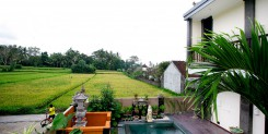 FREEHOLD IN UBUD