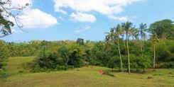 VERY GOOD PRICED FREEHOLD INVESTMENT LAND IDR 47,25M/ARE
