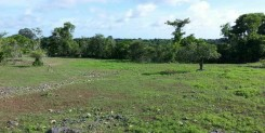 BUILDERS DREAM IN PEACEFUL AREA IDR 200M/ARE
