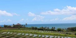 Land Sale In Tabanan Bali | The Luxury View