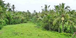 Great Land Location in Bali For Sale | Cozy