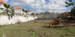 AFFORDABLE FREEHOLD LAND