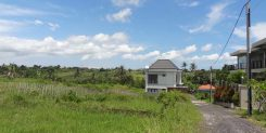 AFFORDABLE LAND FOR SALE IN BUDUK