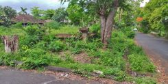 STRATEGIC AND PREMIUM LAND IN SOUTH OF BALI - IDR 550M/ARE