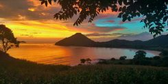 BEAUTIFUL BEACH FRONT IN WEST SUMBAWA - IDR 75M/ARE