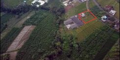 BEAUTIFUL 16 ARE LAND IN GREAT LOCATION IDR 104M/YEAR