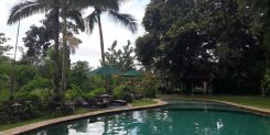 AMAZING LAND WITH JUNGLE VIEWS IN TEGALALANG