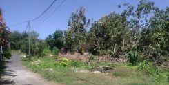 Motivated Seller!!! Cheap land in Pecatu